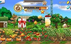 栽培・農作