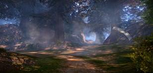ブラカルの森地域イメージ1