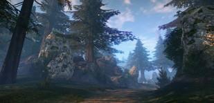 ブラカルの森地域イメージ2