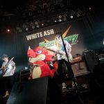 『エックスフラッグスタジオ』「WHITEASH」ツアーファイナル公演に協賛!